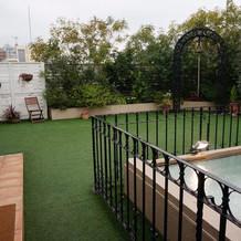 屋上ガーデン。この日は雨でした