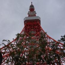 入り口からの東京タワー