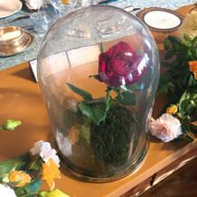 バラのドーム。ゲストにも大好評でした。
