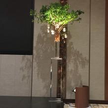 流行りの木の装飾