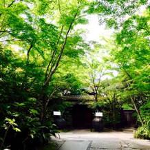 緑が本当に素敵な会場