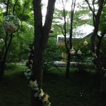 教会周辺の景色