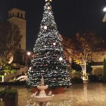クリスマスツリーが綺麗でした。