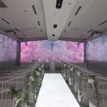 チャペル 桜2