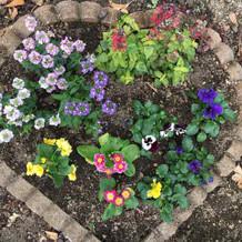 お花がたくさん。
