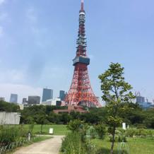 東京タワーをバックに写真撮れます