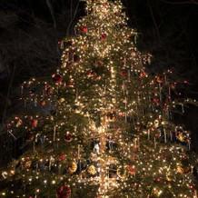 12月にはクリスマスツリーもあります。