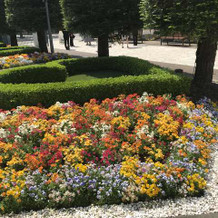 通り道の花壇