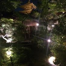 夜の景色です。写真スポットだそう
