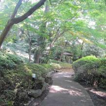 庭園。晴れているととても綺麗。