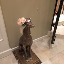 番犬メス。お花はオプションで別途。