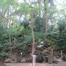 自然いっぱいの庭園