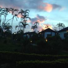 敷地内の夕方の庭。