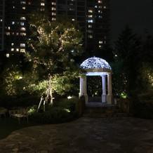 夜のモナコお庭