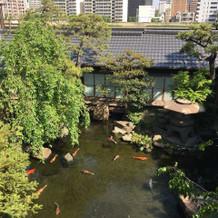 二階から見下ろす池も綺麗