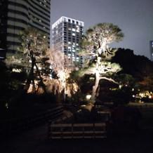 庭園のライトアップは夜も楽しめる