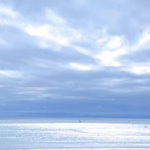 会場から一望できる湘南の海