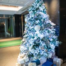 11月末の為クリスマスツリー