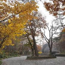 教会の手前の庭