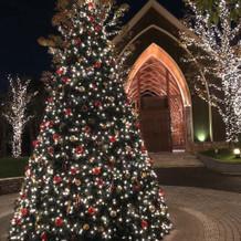 夜のチャペルとクリスマスツリー