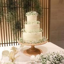ケーキの試食もできました