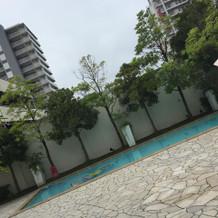 中庭のプール ※当日は曇でした。