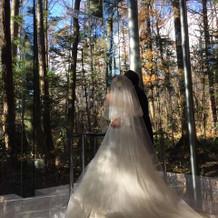 チャペル ドレスがとても映えます。
