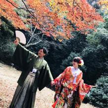 前撮り-袴・色打掛-