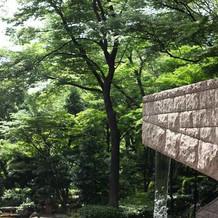 緑あふれる庭園