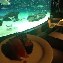 水族館の水槽の前でのお寿司