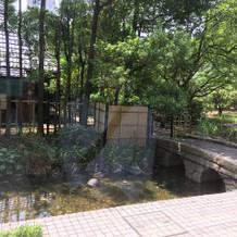 池もあり、写真を撮れます