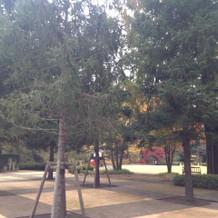 チャペル前 庭