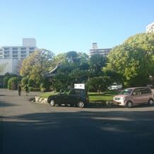 駐車場の雰囲気。十分な駐車スペース
