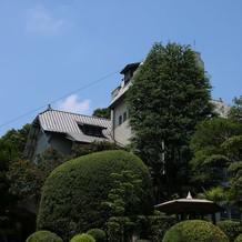 100年を見越した植木