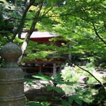 日本庭園あり