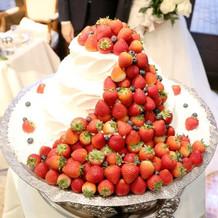 ケーキも他に見ないデザイン!