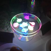 水に浮かべた花びらが発光!