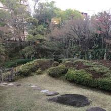 1月の見学でしたので寒々しい庭です
