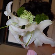 カサブランカの生花。とても大きいです