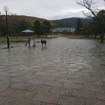 奥の建物が奈良春日野国際フォーラムです