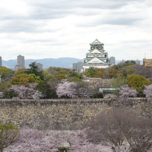 ちょうど桜が満開でした