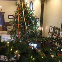 クリスマスにはツリーが飾ってあります。