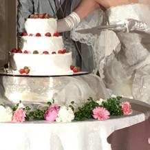 ケーキ可愛いです