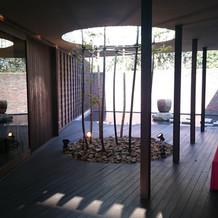 入り口を入ると竹が生えています。
