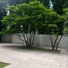 この会場ならお庭も自由に使えます