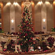 ホテルのロビー。ツリーが飾られて綺麗。