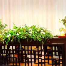 私たちが座るメインテーブルも緑多め♪