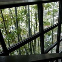 階段からみえる竹