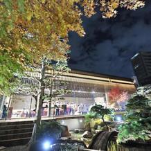 夜の庭園その2