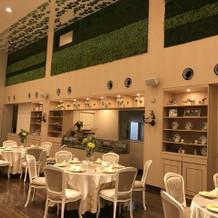 壁には緑もあって優しい雰囲気。